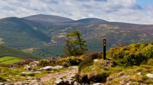 irlande-paysage-randonnee-wicklow-way-3