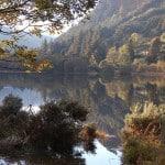 Wicklow - parc - Irlande - forêt - cascades - randonnée