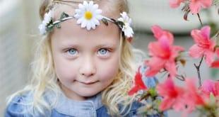 fillette - bloom 2014 - irlande - dublin - fleur - famille - évènement - cuisine