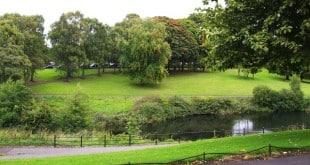 phoenix park - plante - irlande - dublin - promenade - gratuit