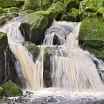 wicklow - cascade - rivière - forêt - irlande- parc