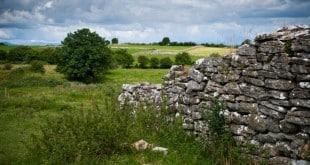 mur-pierre-seche-irlande