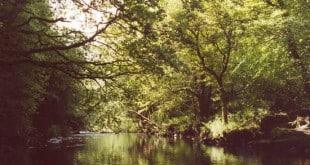 comeraghs - wild- festival - waterford - septembre - Irlande - randonnée - nocturnes - contes - musiques