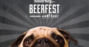 Killarney Beer Festival 2015